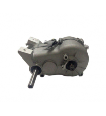 Boite de Vitesse Microcar MC1, MC2