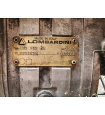 Moteur Lombardini Focs 38000 km ( avec bobine de charge )