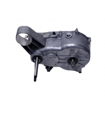 Boite de vitesse Ligier Xtoo R / S / RS / OPTIMAX / IXO / MICROCAR CARGO MOTEUR DCI